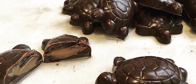 Chokoladeskildpadder